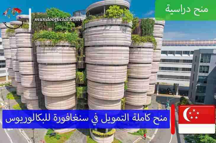 منح جامعة نانيانغ في سنغافورة 2021 الكاملة التمويل لمرحلة البكالوريوس