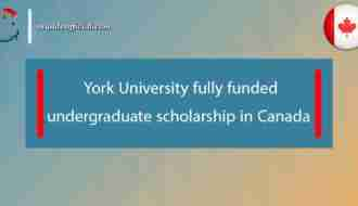 York University fully funded undergraduate scholarship in Canada