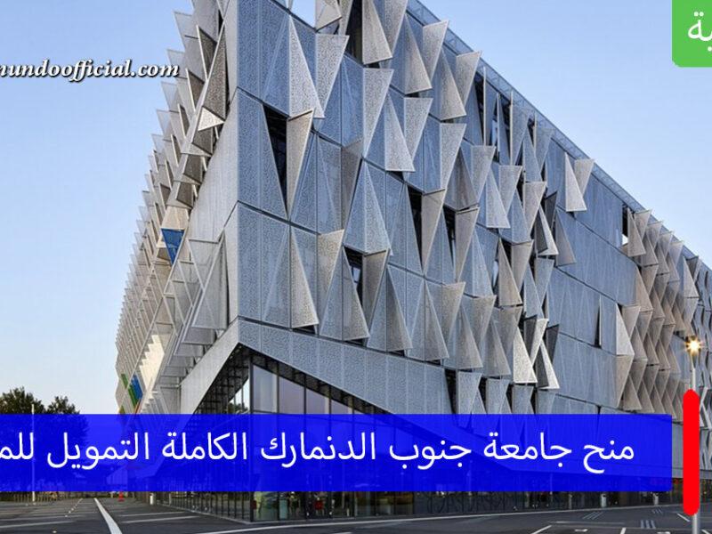 منح جامعة جنوب الدنمارك الكاملة التمويل لدراسة الماجستير